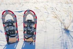 Paar sneeuwschoenen in sneeuw Royalty-vrije Stock Afbeeldingen