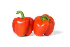 Paar Spaanse pepers Royalty-vrije Stock Fotografie