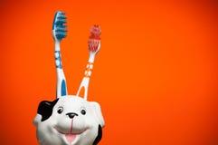 Paar tandenborstels Stock Afbeelding