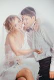 Paar van bruid en bruidegom omvat met sluier Royalty-vrije Stock Afbeelding