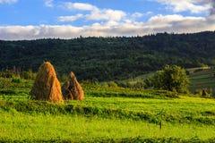 Paar van hooibergen en treeat de voet van berg Royalty-vrije Stock Afbeelding