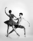 Paar van jonge en atletische balletdansers Royalty-vrije Stock Foto's
