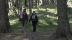Paar van jonge wandelaars met rugzakken die in de sleep lopen die van de avonturenberg van aard genieten - stock videobeelden