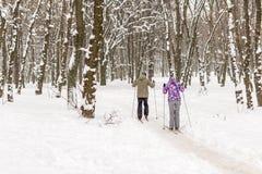 Paar van mensen die van langlaufski in stadspark of bos genieten in de winter De openluchtactiviteiten van de familiesport in win royalty-vrije stock fotografie