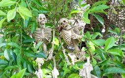 Paar van Skeletten op struiken Royalty-vrije Stock Foto's