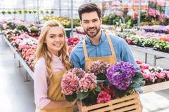 Paar van tuinlieden die potten houden Stock Fotografie