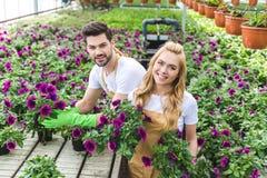 Paar van tuinlieden in handschoenen die potten houden Royalty-vrije Stock Afbeeldingen