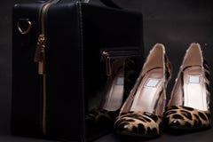 Paar van vrouwenschoenen en handtas op zwarte achtergrond, dierlijke huiden Stock Afbeelding