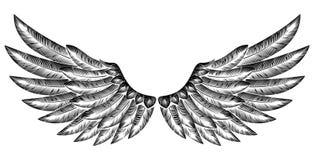 Paar Vogelvleugels vector illustratie