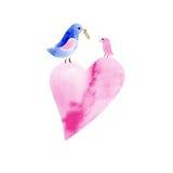 Paar waterverfvogels royalty-vrije illustratie