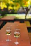 Paar wijnglazen met witte wijn op wijngaard in Rheingau Royalty-vrije Stock Afbeelding