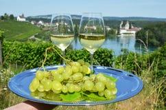 Paar wijnglazen tegen Rijn-rivier Royalty-vrije Stock Foto's