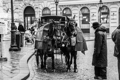 Paard, blokkenwagen en wagenmenner royalty-vrije stock fotografie