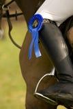 Paard dat 029 springt Stock Afbeelding