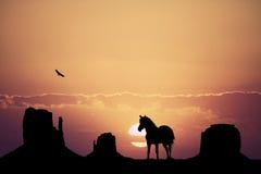 Paard in de woestijn royalty-vrije illustratie