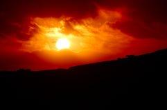 Paard in de zonsondergang Stock Foto's