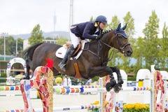 Paard die - Daniel Bluman springen Stock Fotografie