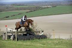 Paard die een omheining in Engels platteland springen Stock Afbeelding