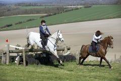 Paard die een omheining in Engels platteland springen Royalty-vrije Stock Fotografie