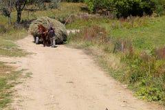 Paard die een vervoer van hooi trekken Stock Afbeeldingen
