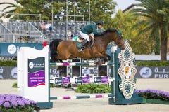 Paard die - Kamal Bahamdan springen Royalty-vrije Stock Afbeelding