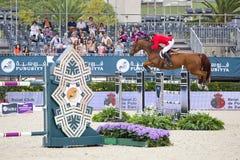 Paard die - Mclain-Afdeling springen Stock Foto