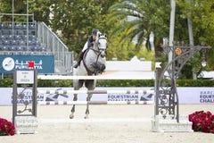 Paard die - Sergio Alvarez Moya springen Royalty-vrije Stock Afbeelding