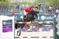 Paard die springen - sla Mandli Royalty-vrije Stock Foto's