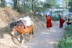 Paard dragende goederen en twee jonge monniken bij sleep aan Taktshang Goemba stock afbeelding