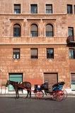 Paard en bus bij Piazza Navona - Rome - Italië Stock Foto