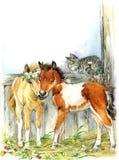 Paard en en kat Achtergrond met bloem Illustratie Stock Afbeeldingen