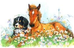Paard en en puppy Achtergrond met bloem Illustratie Stock Afbeelding