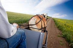 Paard en Kar Royalty-vrije Stock Fotografie