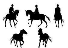 Paard en mens Royalty-vrije Stock Foto