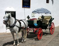 Paard en Met fouten in Spanje royalty-vrije stock afbeelding