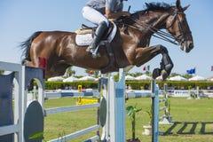 Paard en ruiter die in de ruiterconcurrentie springen Royalty-vrije Stock Afbeeldingen