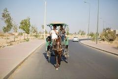 Paard en vervoer Royalty-vrije Stock Foto's