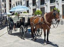 Paard en vervoer voor huur Royalty-vrije Stock Afbeeldingen