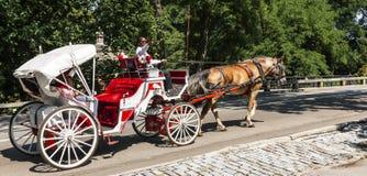 Paard getrokken carraige bestuurder die gebieden van centraal park verklaren stock afbeelding