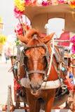 Paard getrokken die vervoer met bloemen wordt verfraaid Stock Fotografie