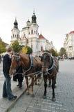 Paard Getrokken Kar Royalty-vrije Stock Foto