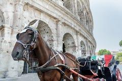 Paard getrokken vervoer of botticella in het Italiaans op de straat van Rome voor oude Colosseum stock foto's
