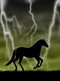 Paard in het onweer Stock Afbeeldingen