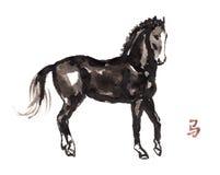 Paard het oosterse inkt schilderen, sumi-e Royalty-vrije Stock Fotografie