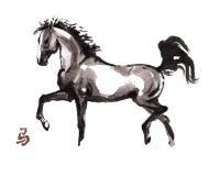 Paard het oosterse inkt schilderen, sumi-e Stock Foto's