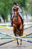 Paard het springen hindernissen Royalty-vrije Stock Afbeeldingen