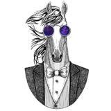 Paard, hoss, ridder, ros, courser de dierlijke Hand getrokken illustratie van Hipster voor tatoegering, embleem, kenteken, emblee royalty-vrije illustratie