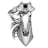 Paard, hoss, ridder, ros, courser dragend de Hoed met opgeslagen randen van de piraathoed, tricorn Zeeman, zeeman, zeeman, of zee royalty-vrije illustratie