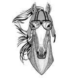 Paard, hoss, ridder, ros, courser dragend het Dier van de fietserhelm met de helm Uitstekende helm van het motorfietsleer voor fi stock illustratie