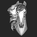 Paard, hoss, ridder, ros, courser Hand getrokken beeld voor tatoegering, embleem, kenteken, embleem, flard, t-shirt het Koele die vector illustratie